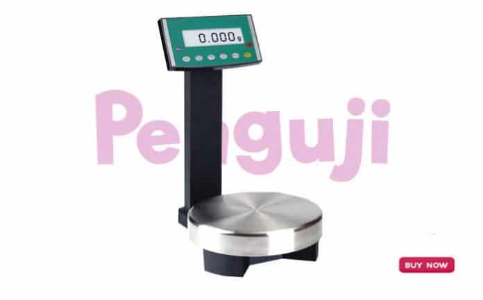 Digital Paint Mixing Scale PST-21
